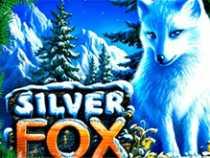 Silver Fox на зеркале казино