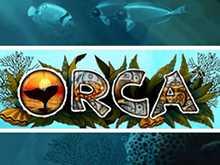 Отзывы об автомате Orca